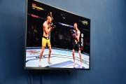 В ВГСПУ прошел «Кубок первокурсников» по UFC-3