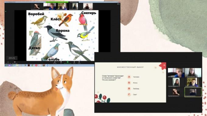 Летний онлайн-лагерь для детей: мы не прощаемся
